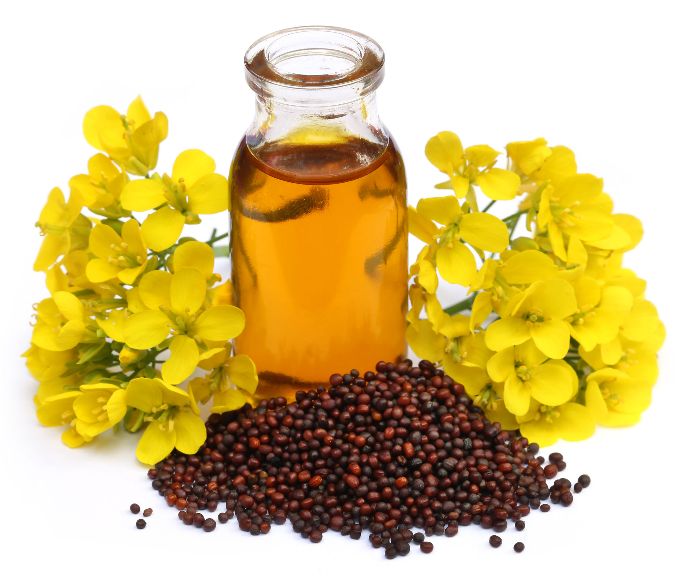 43961071 - mustard oil with flower over white background