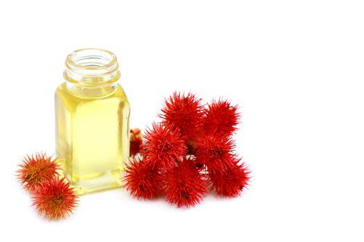 66759697 - castor oil in glass bottle on white background