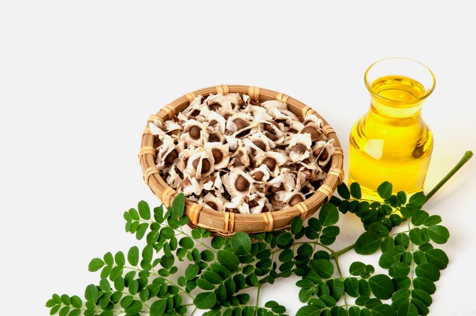 80600699 - moringa oil and seeds.