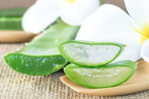 48476651 - aloe vera use in spa for skin care